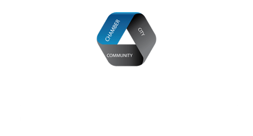 SFS Footer Logo